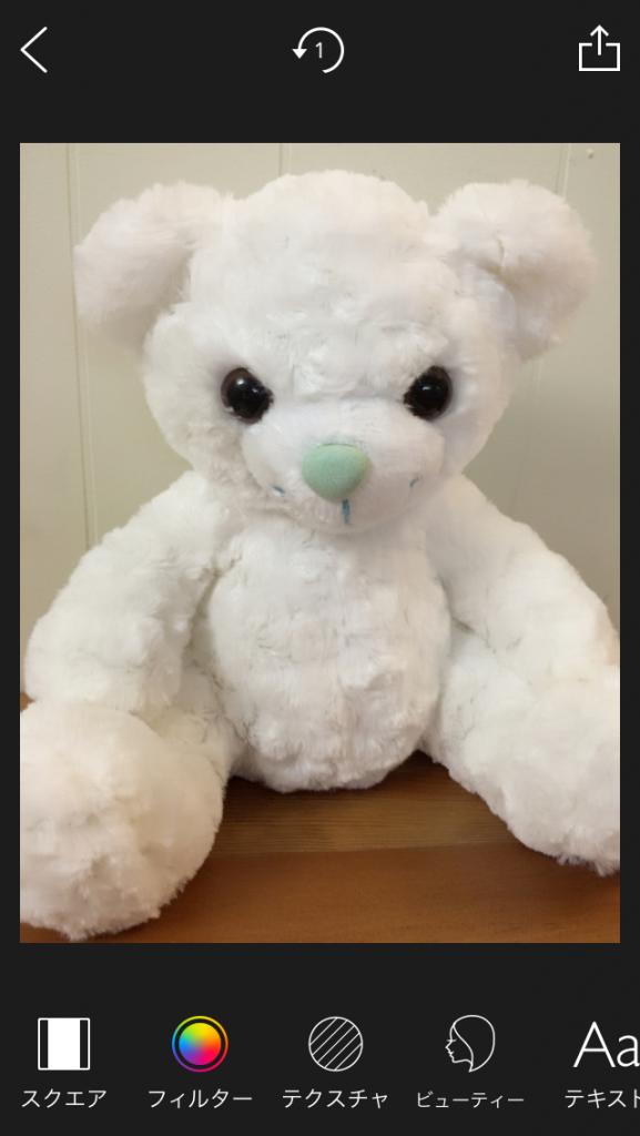 moldiv bear