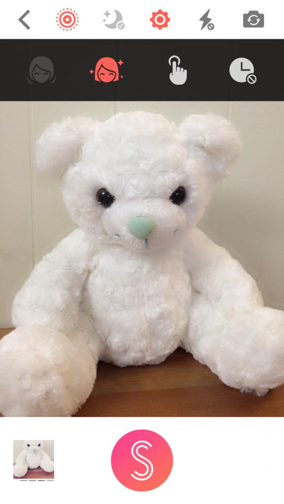 sefiecity-bear
